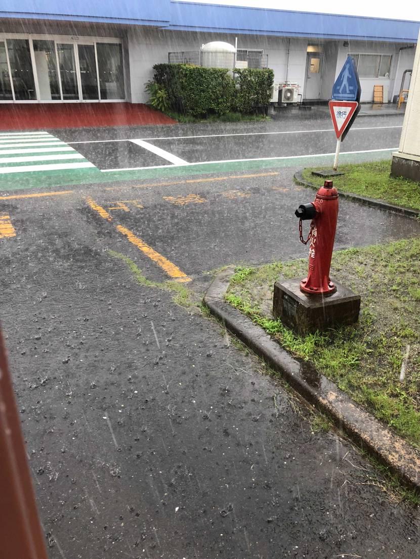 何かしらのゲリラを待っていたら、仙台はまさかの ゲリラ豪雨です(ーー;)