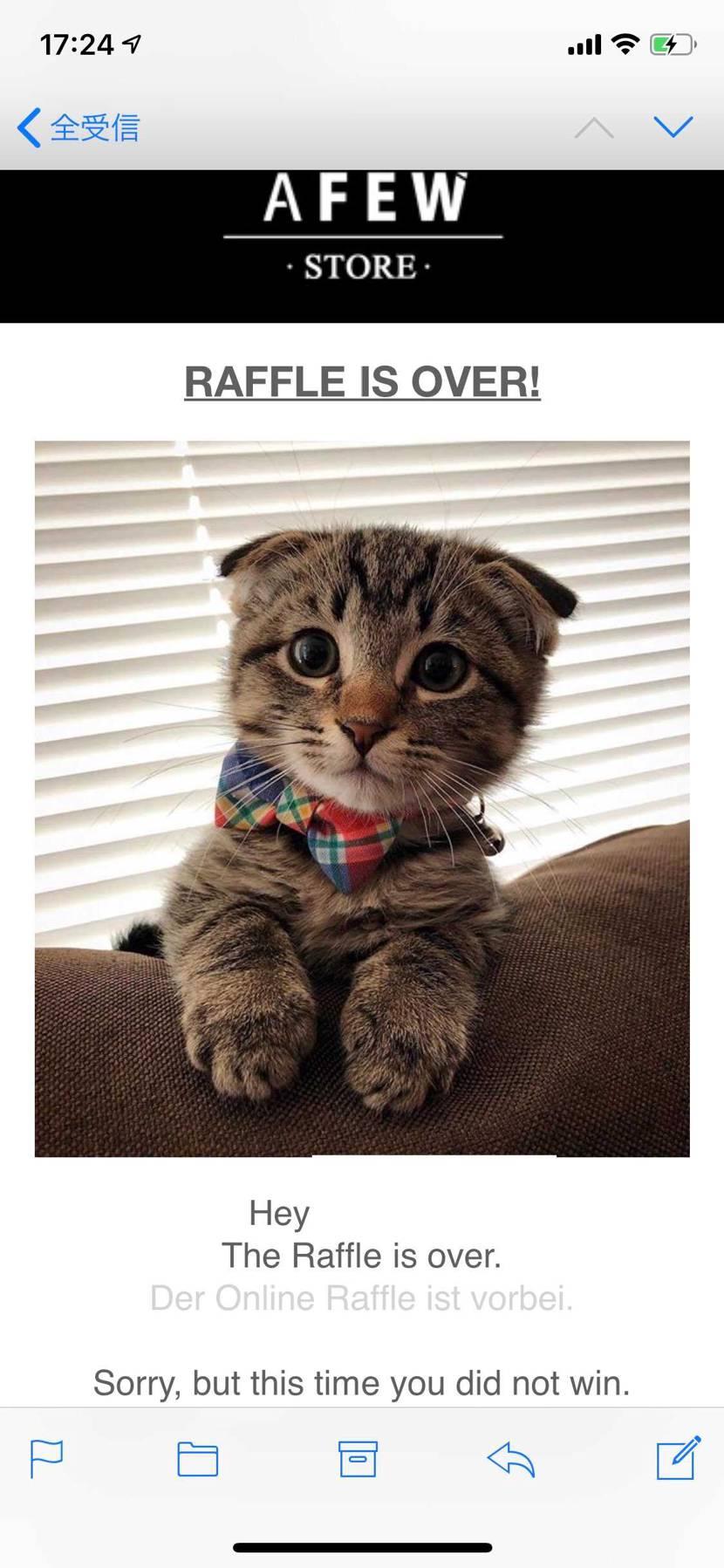 この猫、許せる😂😂😂