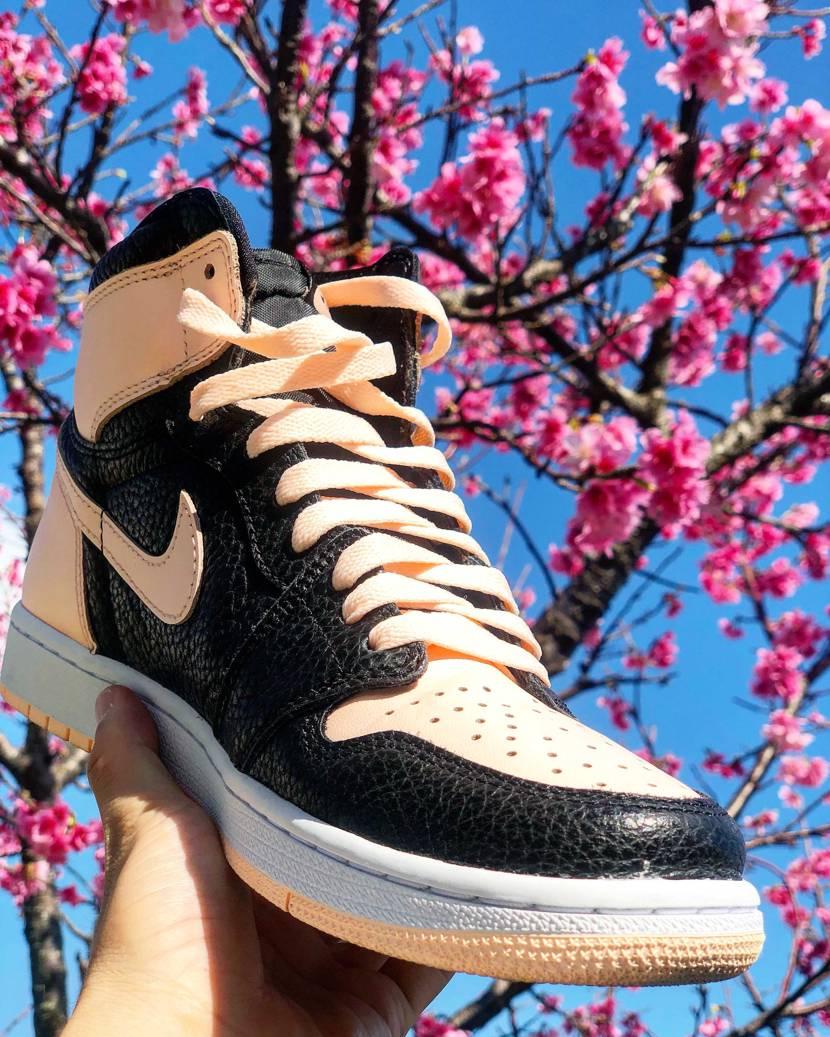 🌸沖縄桜とクリムゾンティント👟 #今日の散歩はコレ