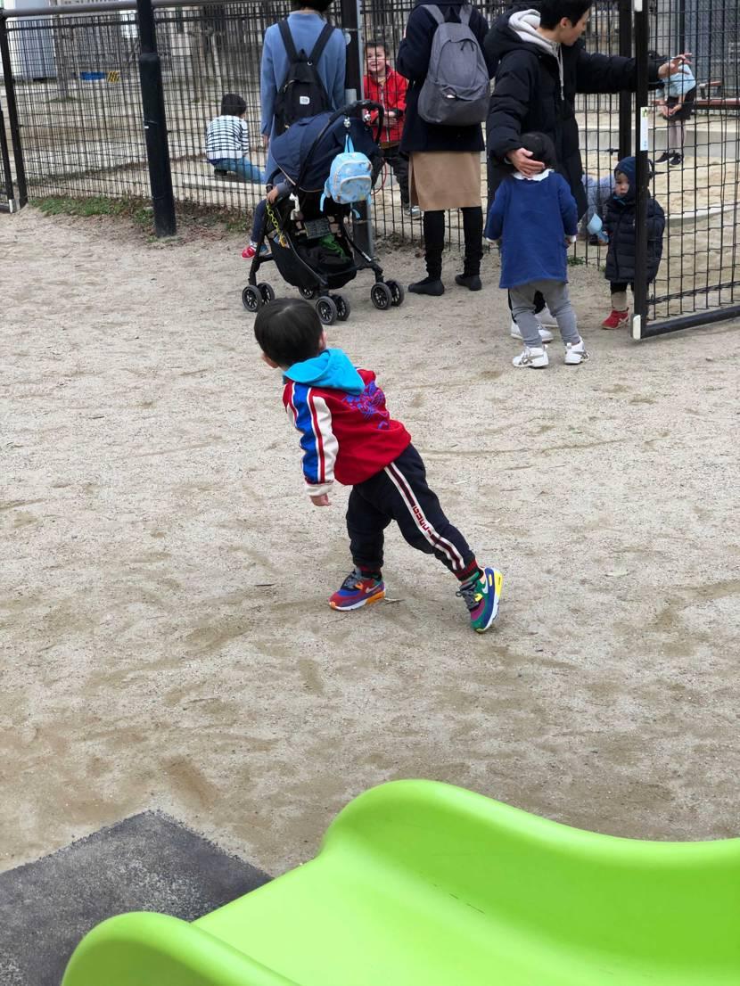 息子と公園に遊びに行ってきました😌 一月とは思えない暖かさ