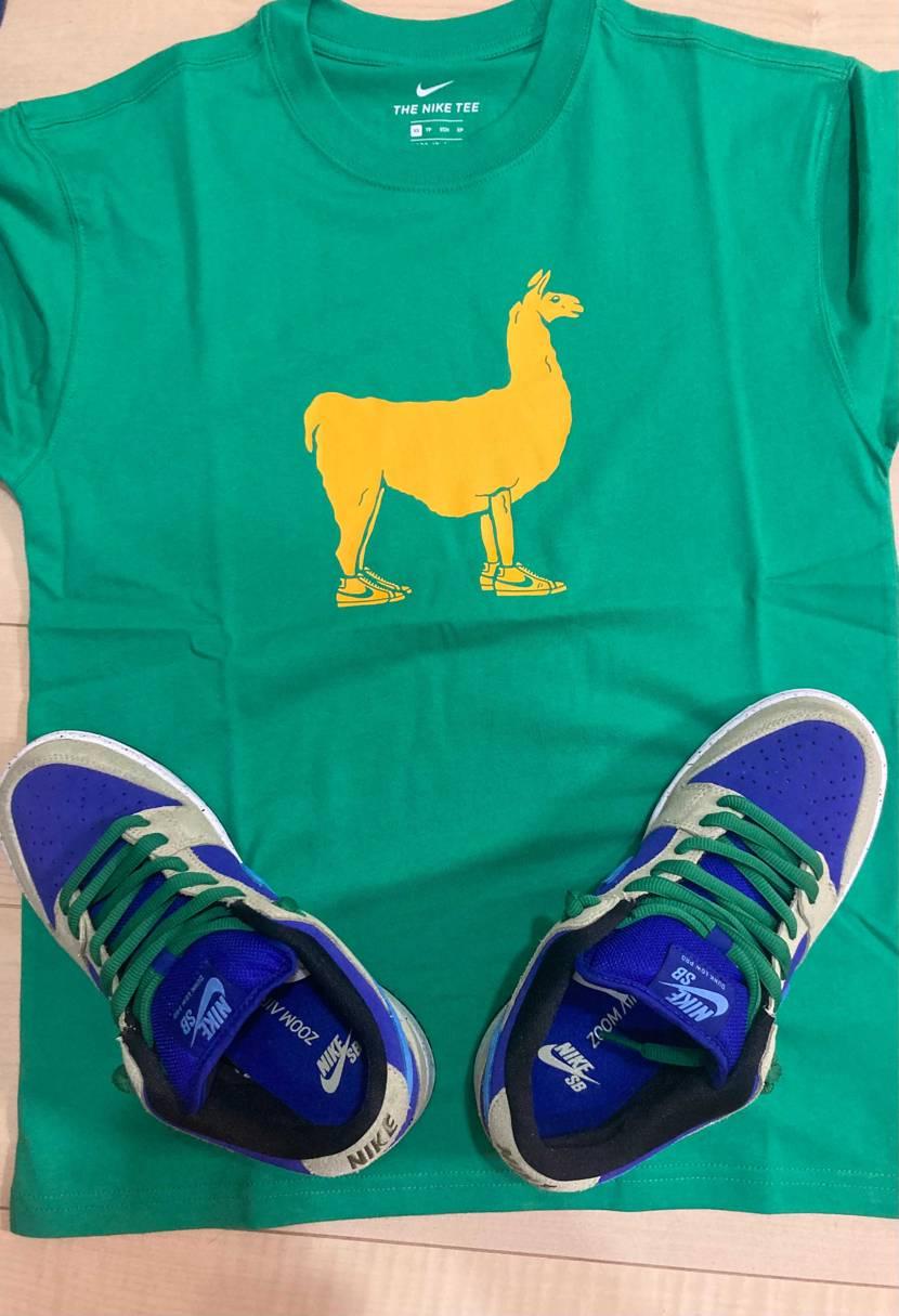 思わず買ってしまったtシャツ(´∀`=)セラドンとあわして