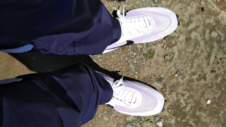 運動不足が洒落にならんということで、春になったら履きたかったこいつで散歩。すれ違