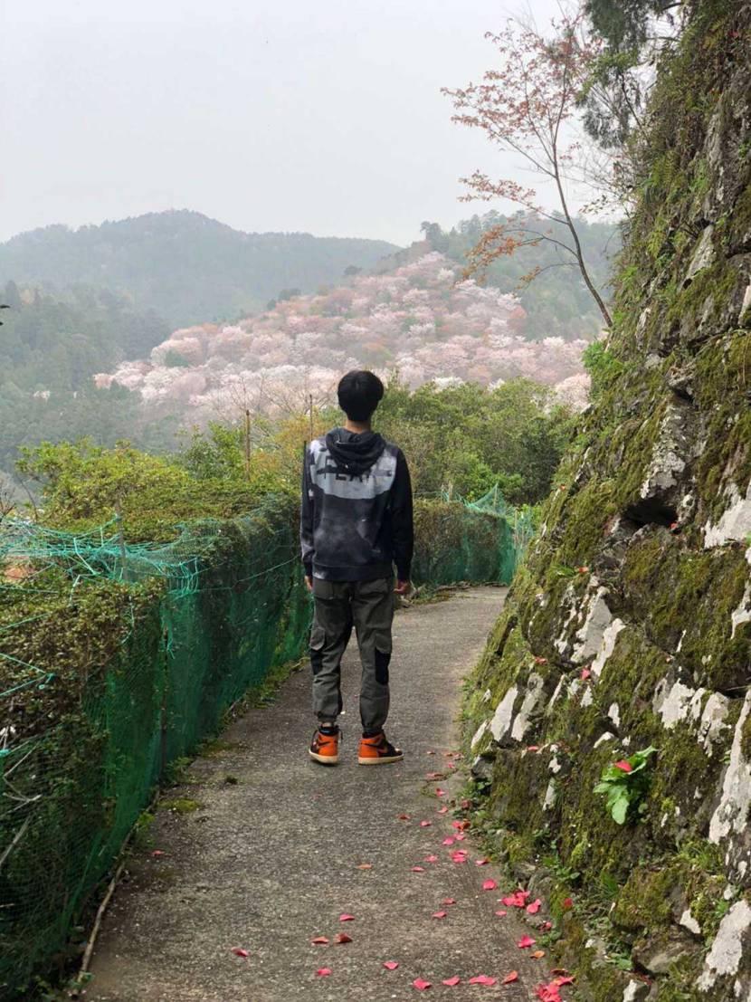 今日は土日を避けて遅めの桜を見に行きました✨ シャタバほんま好き💓