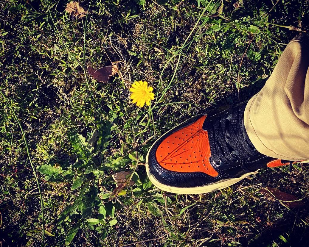 公園散歩👟 秋空とシャタバ テカり具合もいいな😀