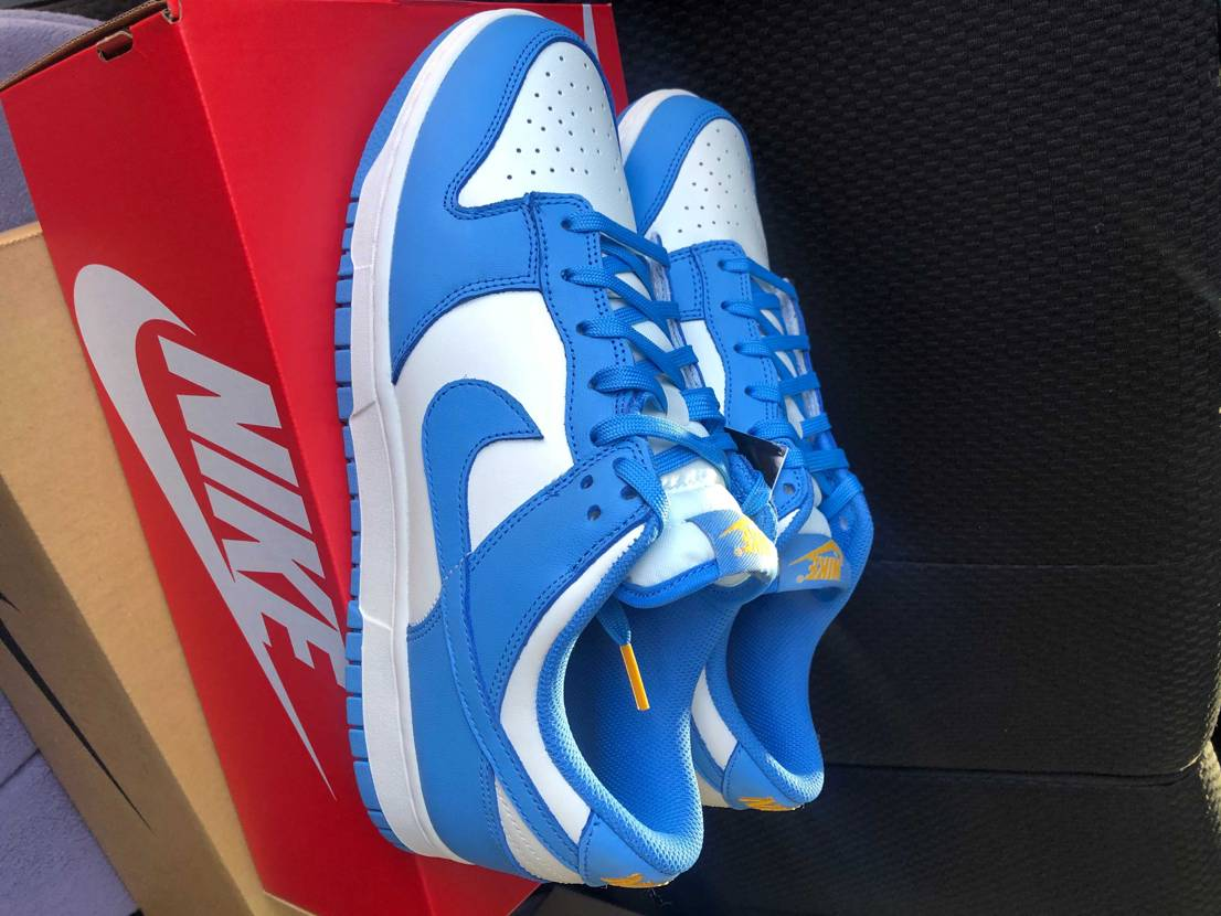 """SNKRSより着弾 NIKE WMNS DUNK LOW """"COAST"""" め"""