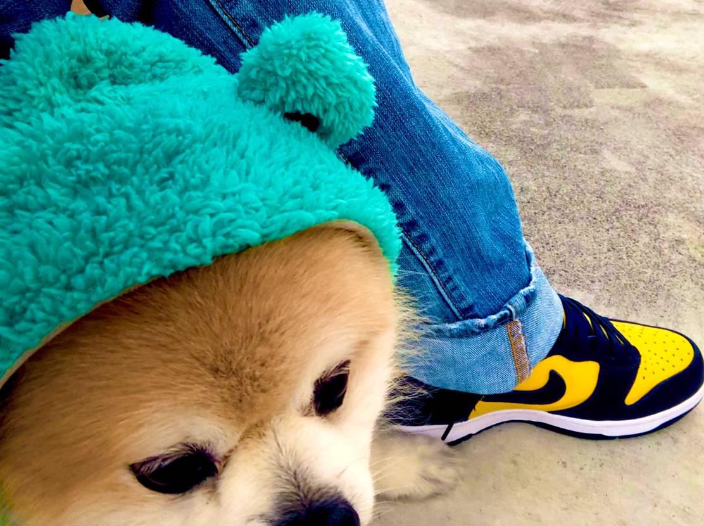 Nike dunk hi michigan!🟡🟦