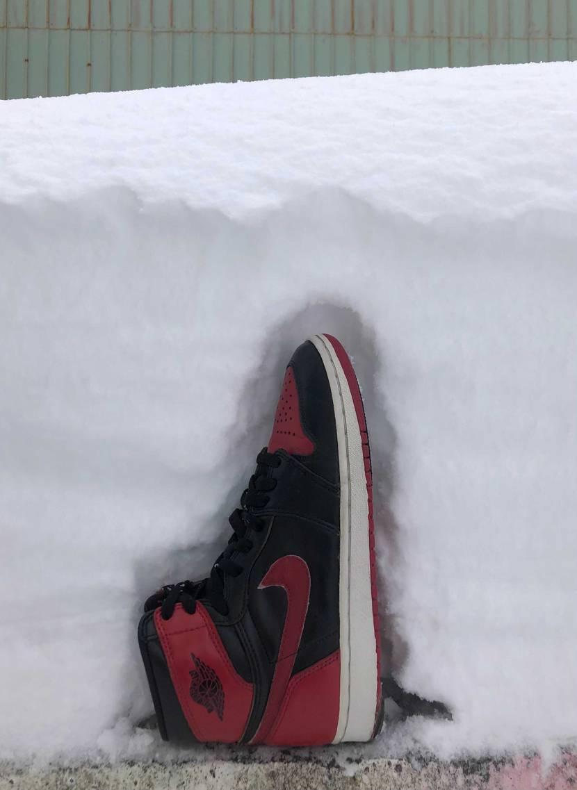 昨夜だけの積雪量はこんな感じです。 雪かき大変…