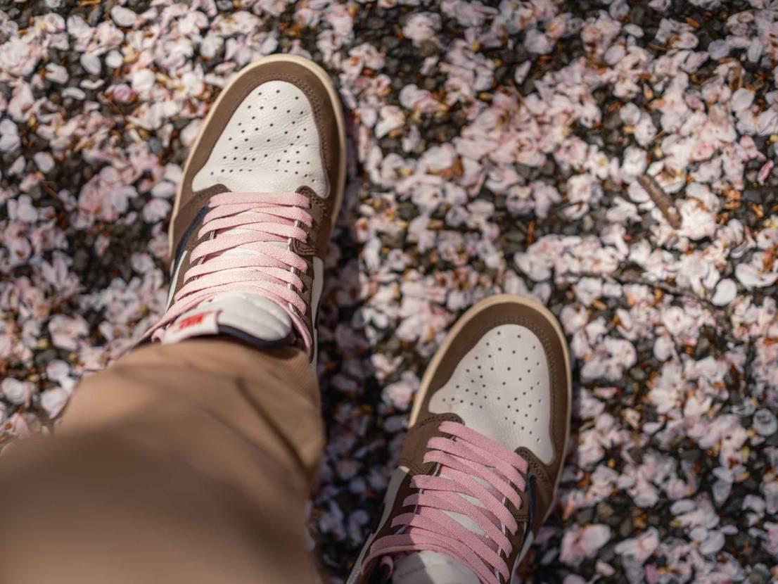 Sakura×Travis 新宿御苑に撮影の仕事で行ったついでに1枚撮ってみま