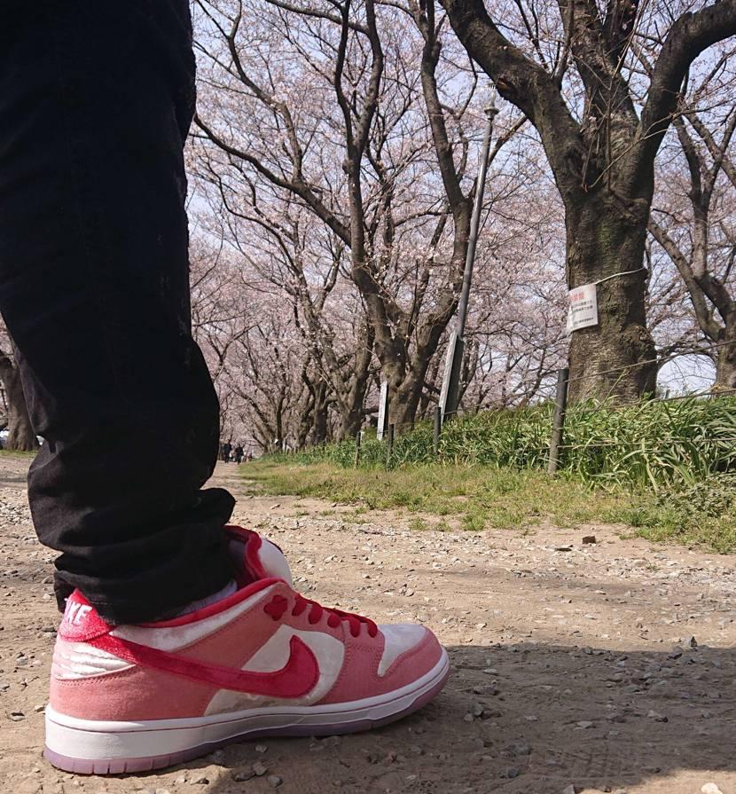 ストレンジラブの初履きで幸手市の権現堂公園へ桜を見に行ってきました コンセプトは
