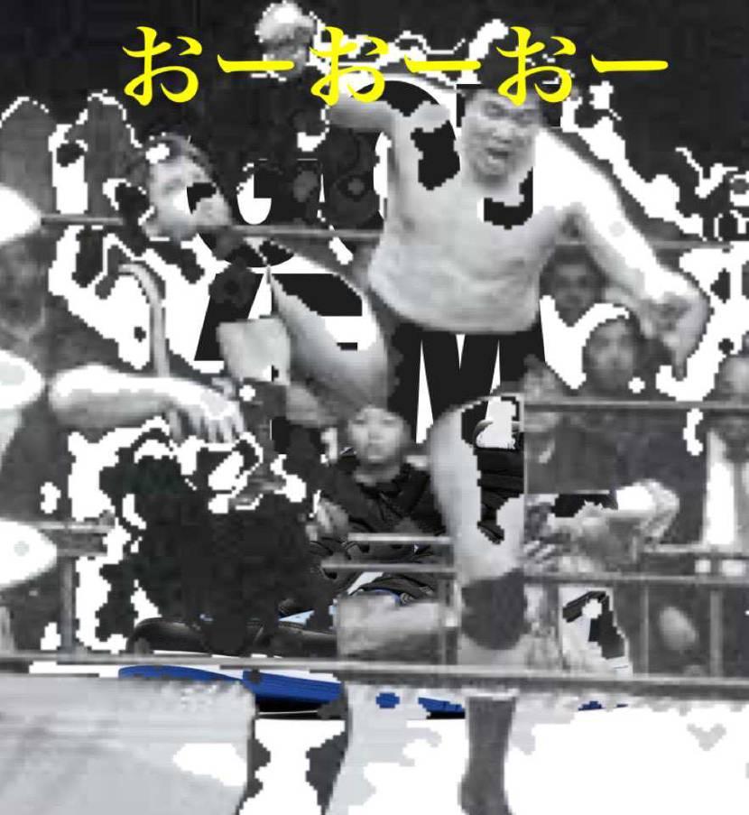 鶴田パワー