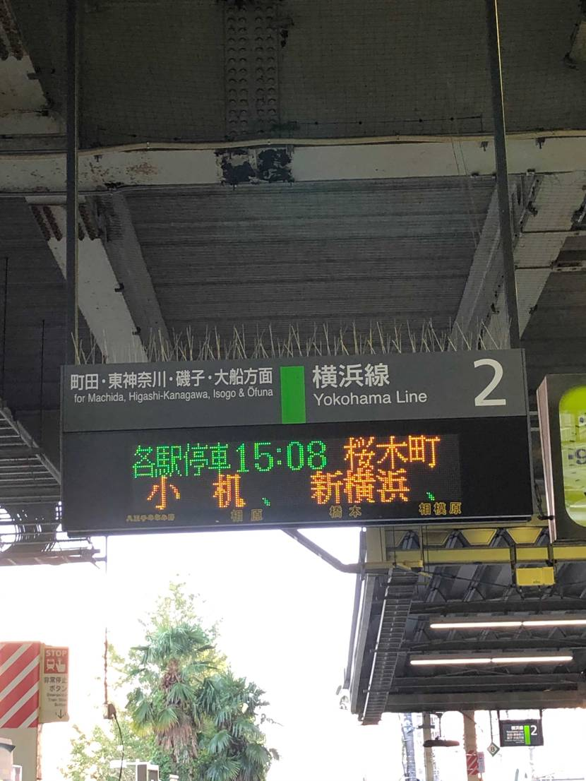 横浜へ向かいます! みなとみらい周辺の公園だと予想しているのですが どうでし