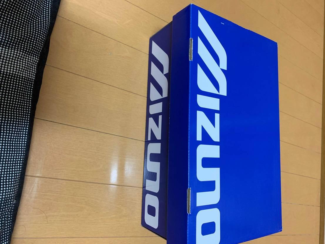 久しぶりのスニーカーはMIZUNOウェーブライダー 10!