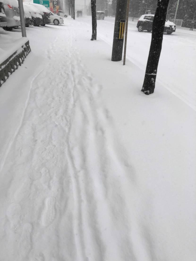 道民から報告です。 本日、完全な冬季期間に入った為、お気に入りの主要メンバー達