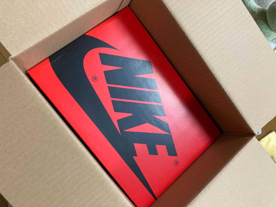 Nike Air Jordan 1 High Zoom R2T リフレクト素材