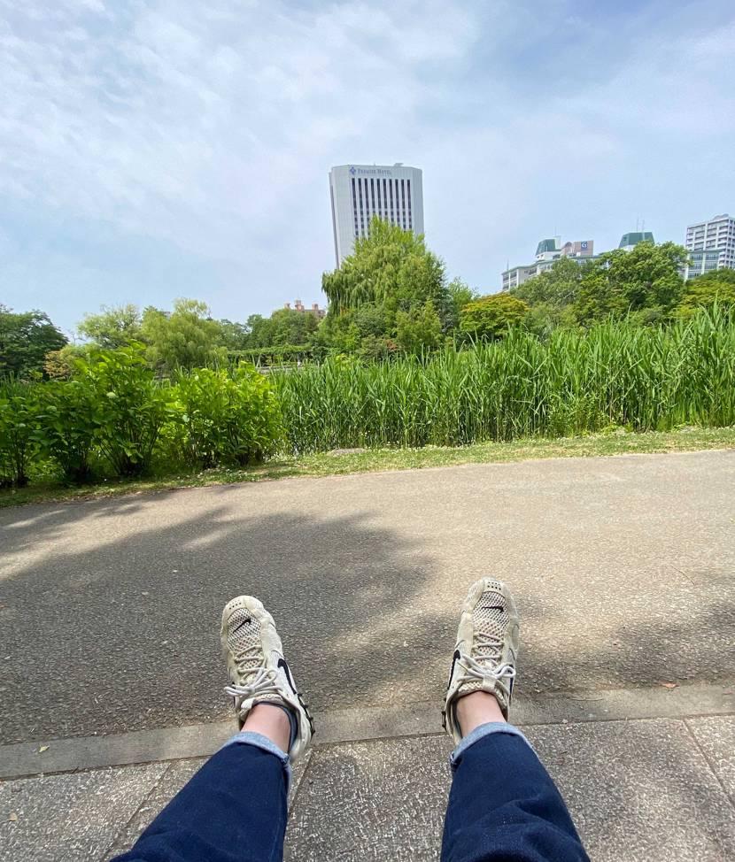 今日も札幌は良い天気ですね〜